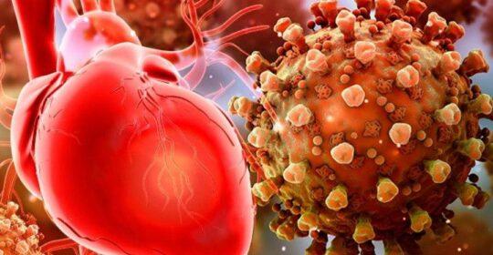 Observaţii terifiante făcute de cercetătorii germani: Coronavirusul atacă inima. Nu există încă, tratament standardizat!